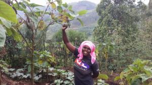 En av många småbönder i Rwanda som deltar i Vi-skogens utvecklingsarbete